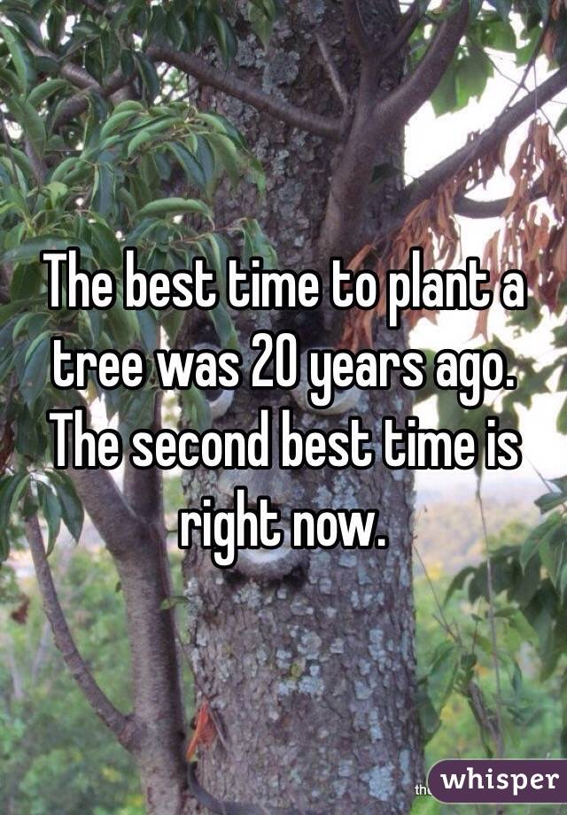 The best time to plant a tree was 20 years ago. The second best time is right now.
