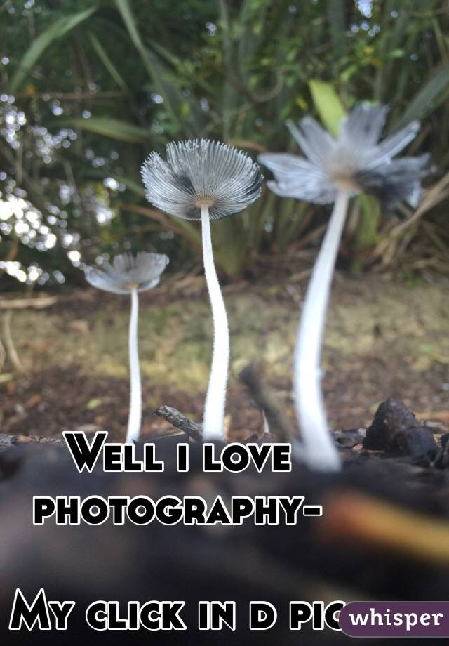 Well i love photography-  My click in d pic