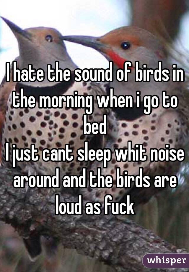 I hate the sound of birds in the morning when i go to bed I just cant sleep whit noise around and the birds are loud as fuck