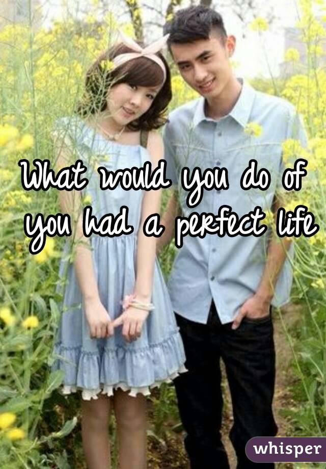 What would you do of you had a perfect life