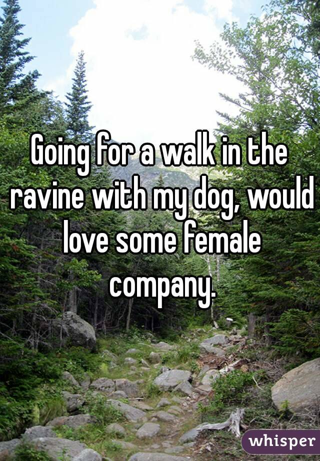 Going for a walk in the ravine with my dog, would love some female company.
