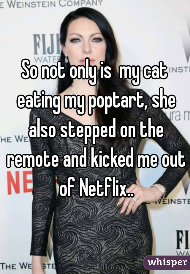 So not only is  my cat eating my poptart, she also stepped on the remote and kicked me out of Netflix..