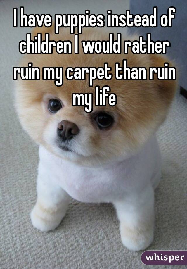 I have puppies instead of children I would rather ruin my carpet than ruin my life