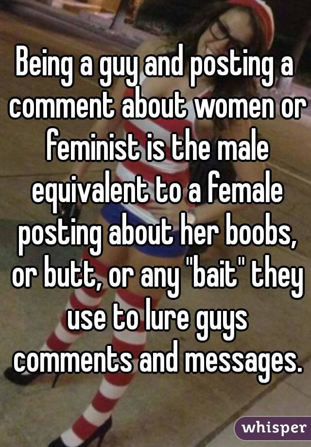 "Being a guy and posting a comment about women or feminist is the male equivalent to a female posting about her boobs, or butt, or any ""bait"" they use to lure guys comments and messages."