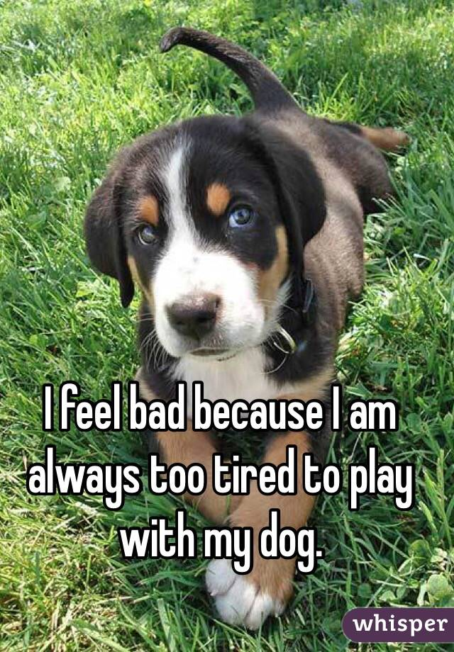 I feel bad because I am always too tired to play with my dog.
