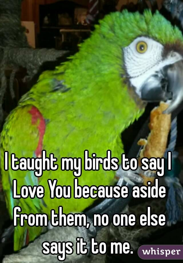 I taught my birds to say I Love You because aside from them, no one else says it to me.