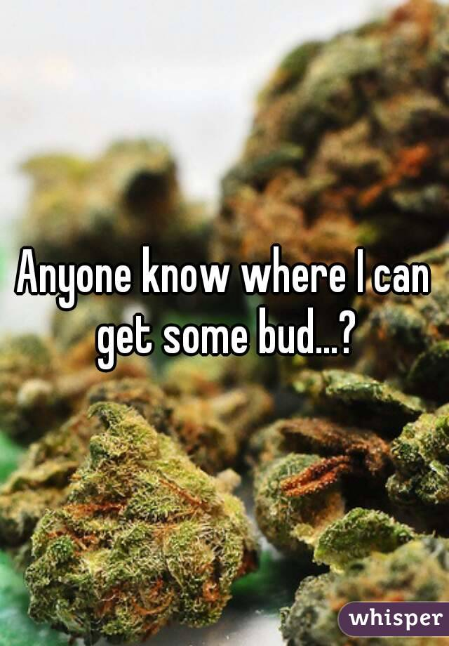 Anyone know where I can get some bud...?
