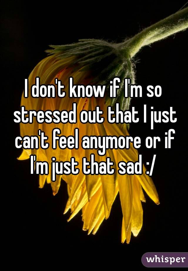 I don't know if I'm so stressed out that I just can't feel anymore or if I'm just that sad :/