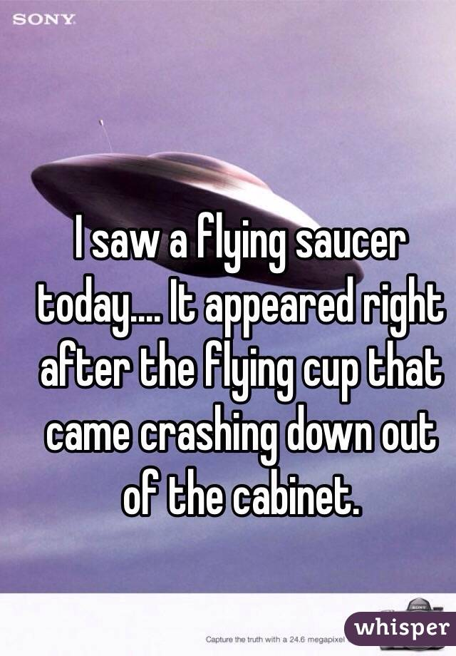 I saw a flying saucer today.... It appeared right after the flying cup that came crashing down out of the cabinet.