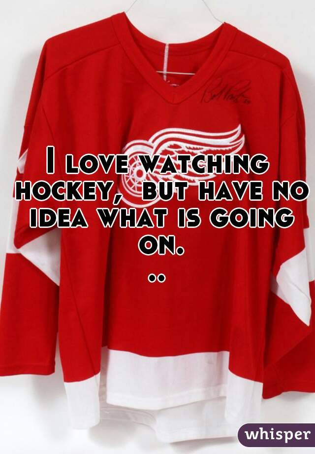 I love watching hockey,  but have no idea what is going on...