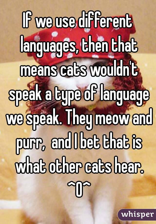 If we use different languages, then that means cats wouldn't speak a type of language we speak. They meow and purr,  and I bet that is what other cats hear. ^O^