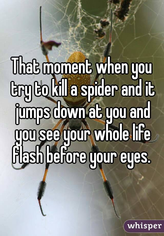 That moment when you try to kill a spider and it jumps down at you and you see your whole life flash before your eyes.