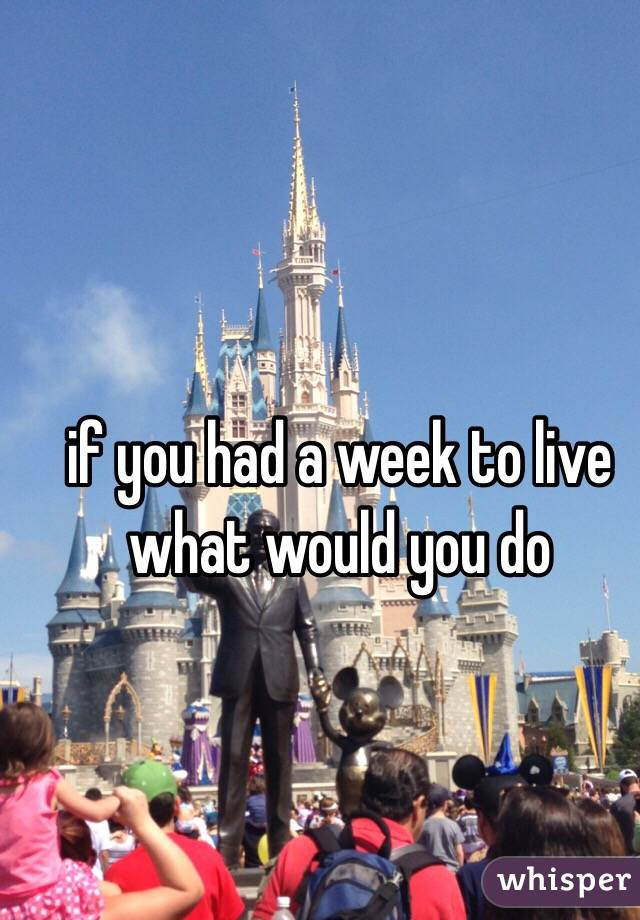 if you had a week to live what would you do