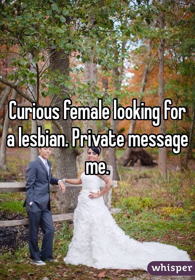 Curious female looking for a lesbian. Private message me.