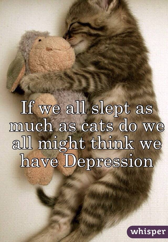 If we all slept as much as cats do we all might think we have Depression