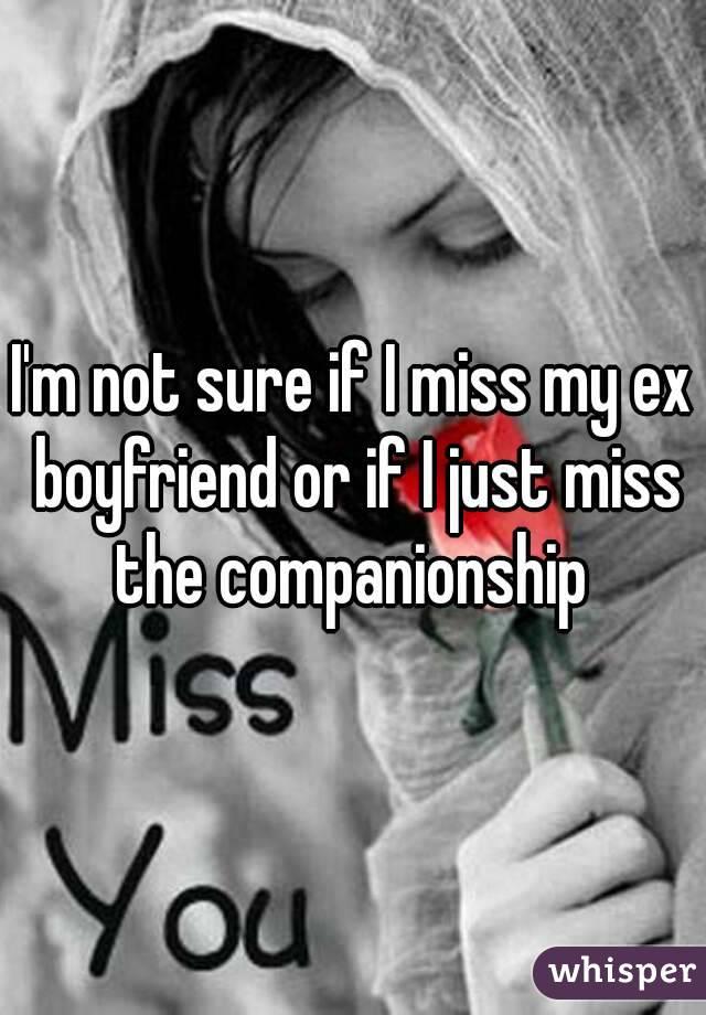 I'm not sure if I miss my ex boyfriend or if I just miss the companionship