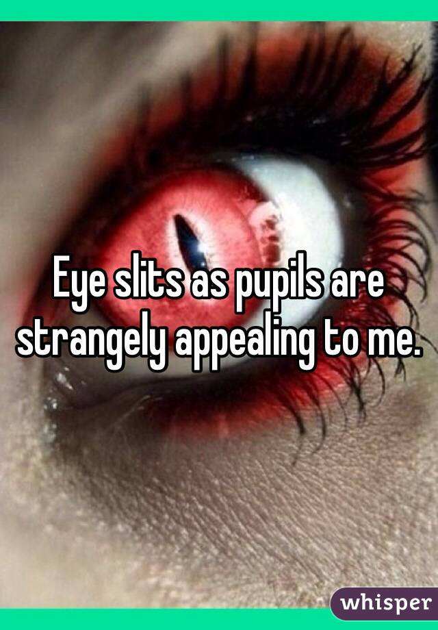 Eye slits as pupils are strangely appealing to me.