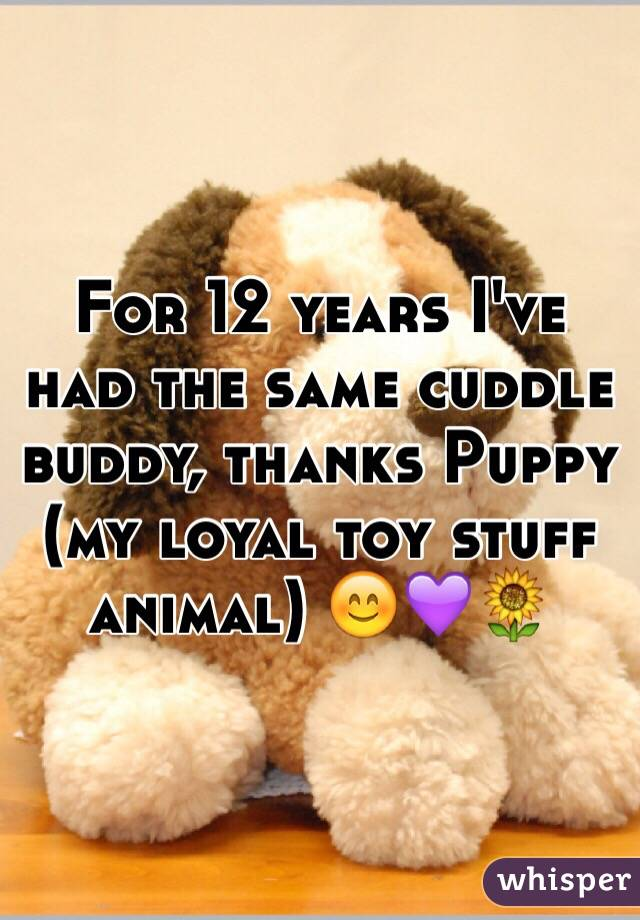 For 12 years I've had the same cuddle buddy, thanks Puppy (my loyal toy stuff animal) 😊💜🌻