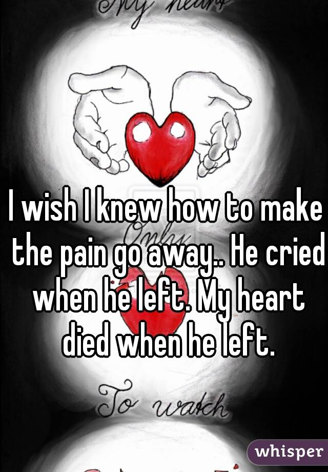 I wish I knew how to make the pain go away.. He cried when he left. My heart died when he left.