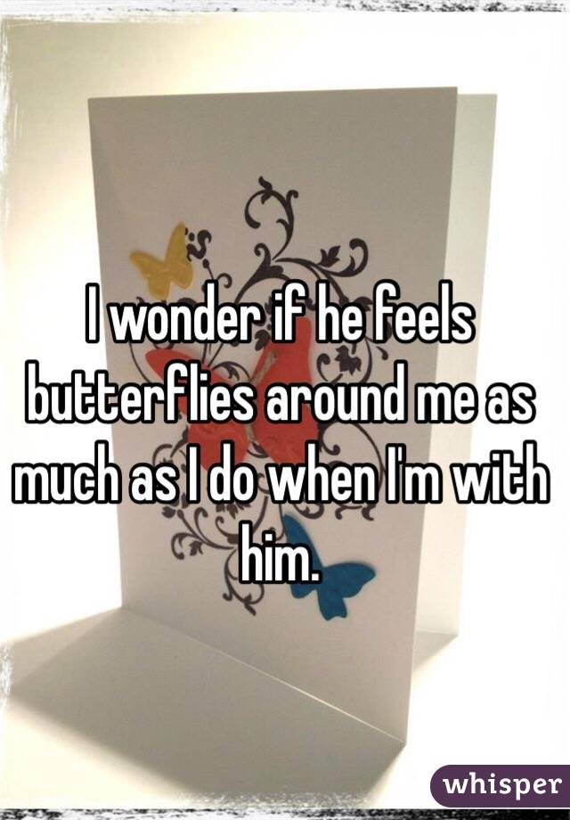 I wonder if he feels butterflies around me as much as I do when I'm with him.