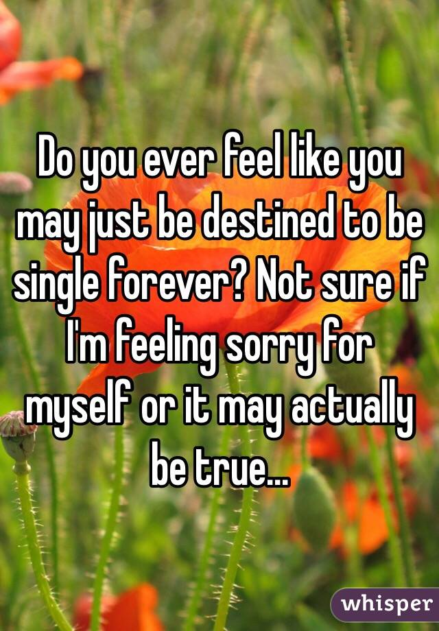 Do you ever feel like you may just be destined to be single forever? Not sure if I'm feeling sorry for myself or it may actually be true...