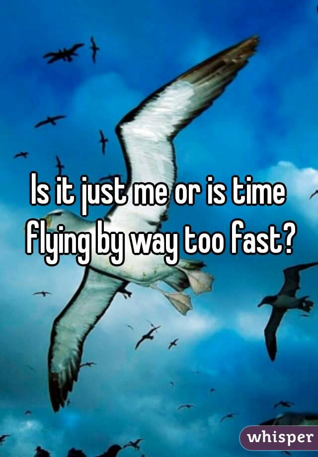 Is it just me or is time flying by way too fast?