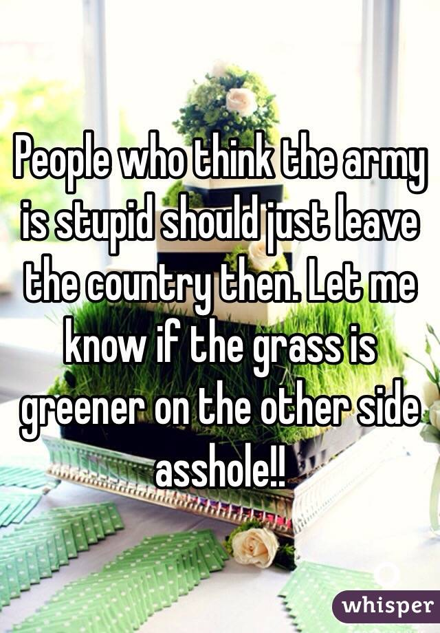 People who think the army is stupid should just leave the country then. Let me know if the grass is greener on the other side asshole!!