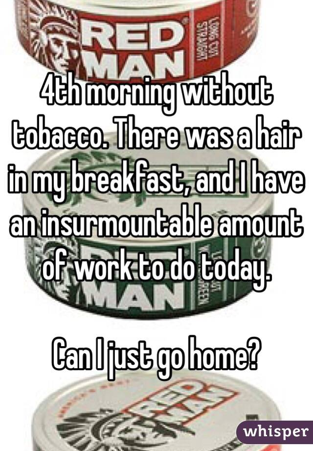 4th morning without tobacco. There was a hair in my breakfast, and I have an insurmountable amount of work to do today.   Can I just go home?