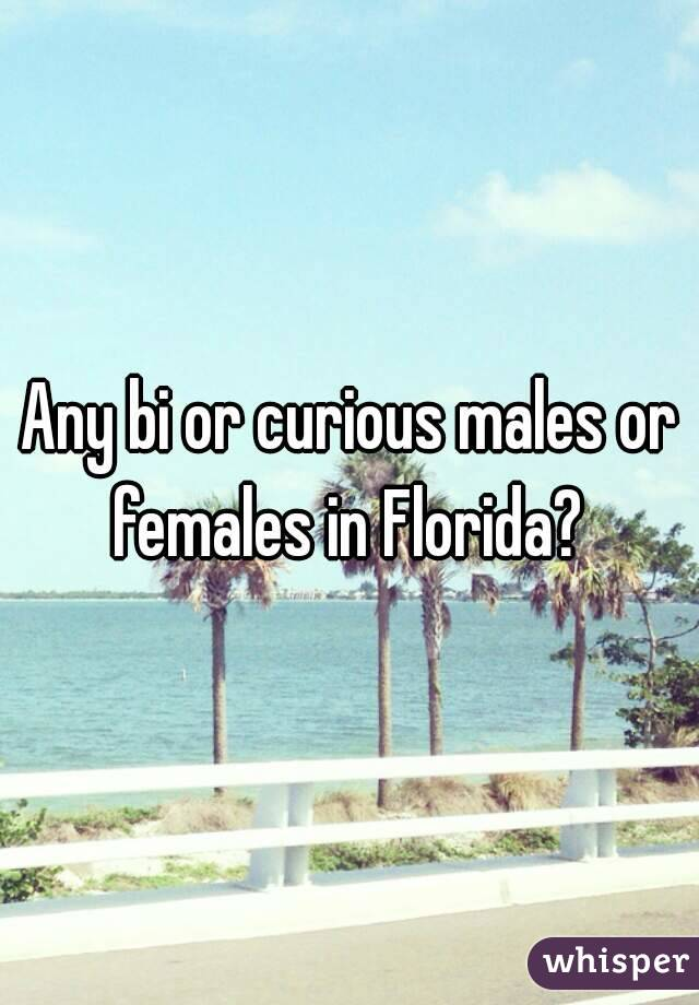 Any bi or curious males or females in Florida?