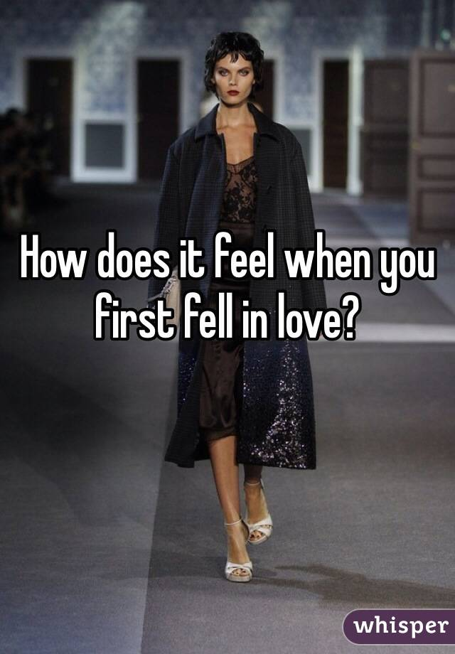 How does it feel when you first fell in love?