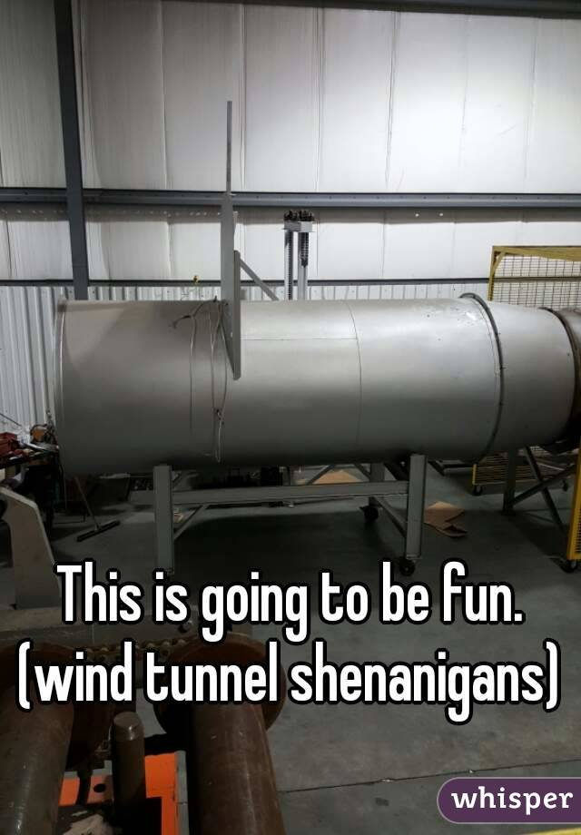 This is going to be fun. (wind tunnel shenanigans)