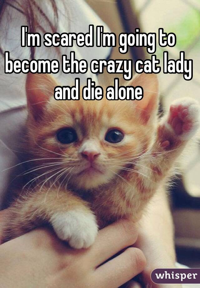 I'm scared I'm going to become the crazy cat lady and die alone