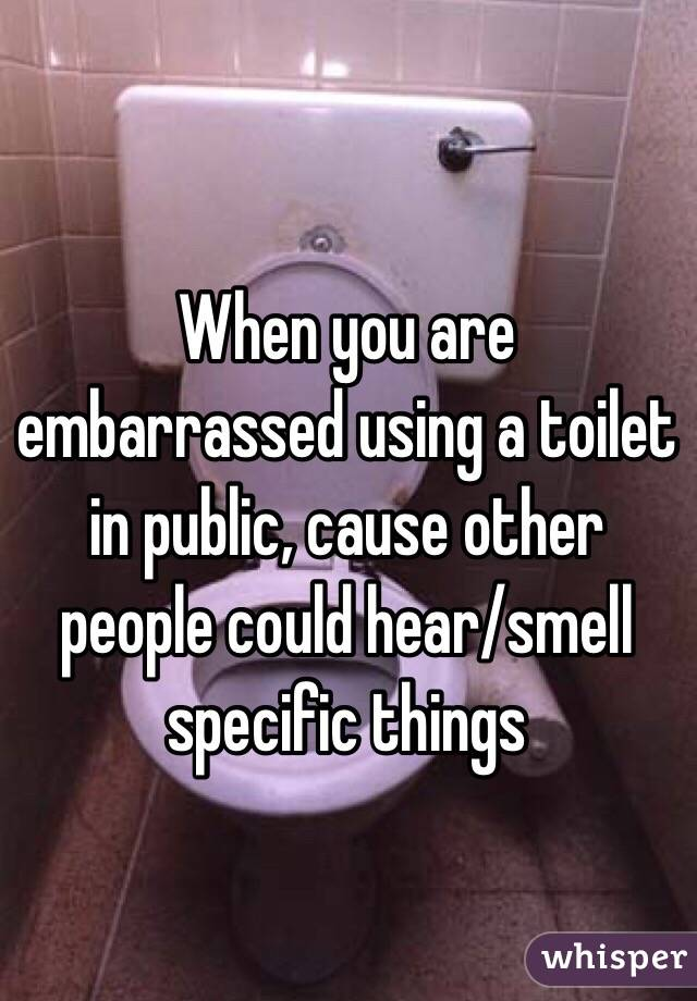 When you are embarrassed using a toilet in public, cause other people could hear/smell specific things
