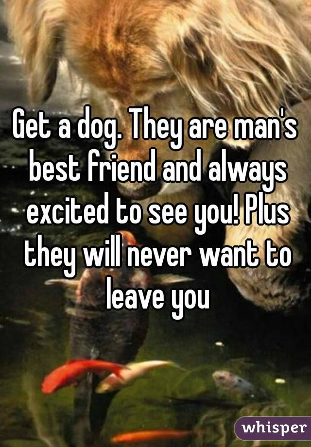 Get a dog. They are man's best friend and always excited to see you! Plus they will never want to leave you