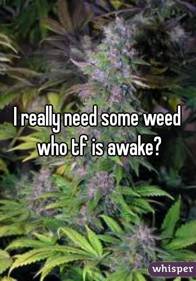 I really need some weed who tf is awake?