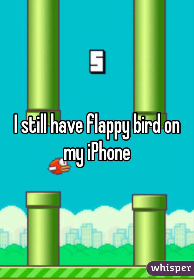I still have flappy bird on my iPhone