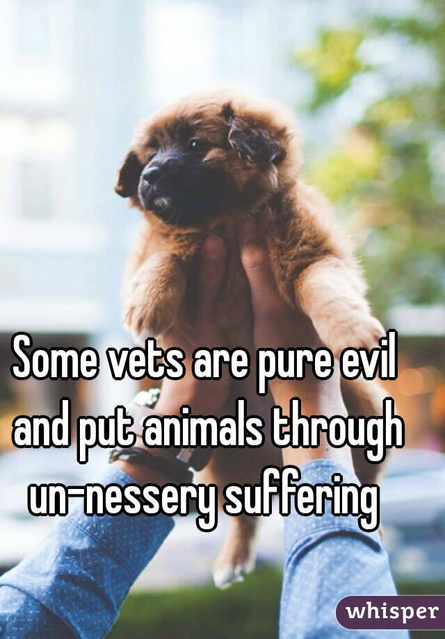 Some vets are pure evil and put animals through un-nessery suffering