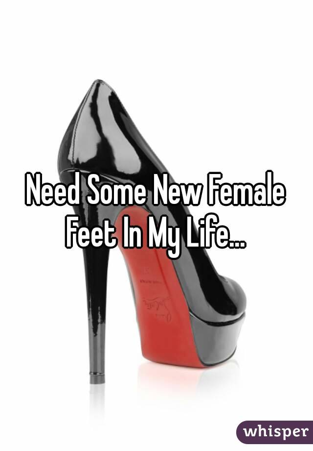 Need Some New Female Feet In My Life...