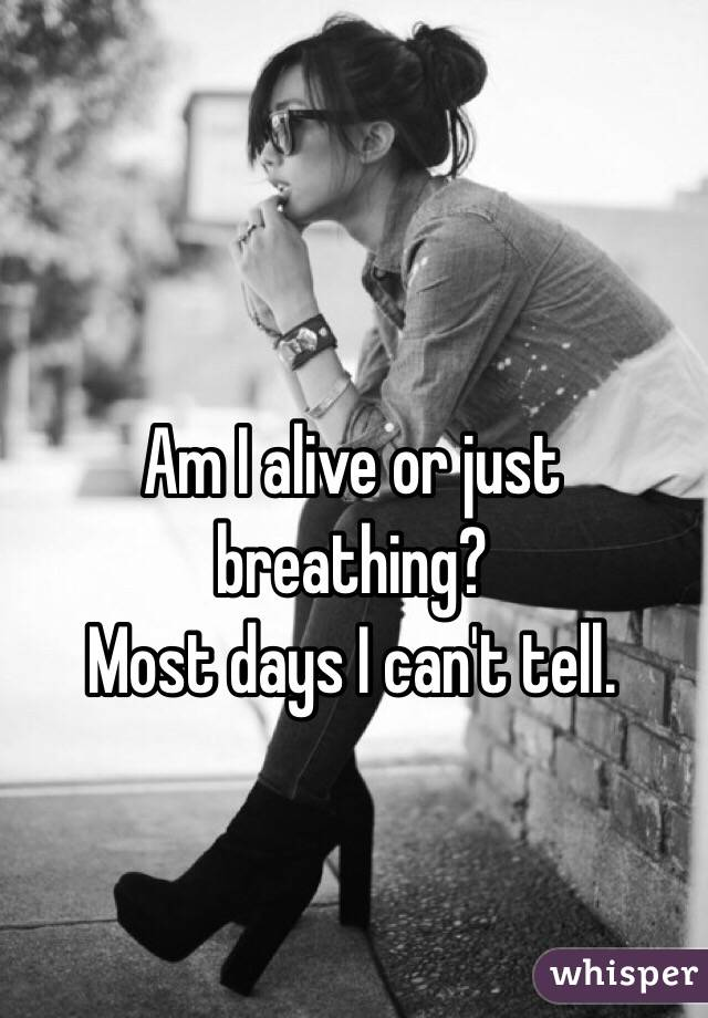 Am I alive or just breathing?  Most days I can't tell.