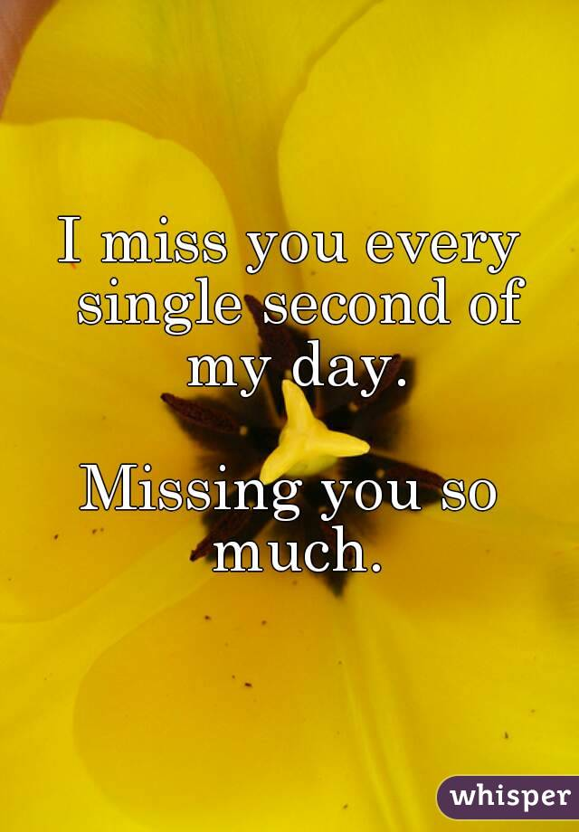 I miss you every single second of my day.  Missing you so much.