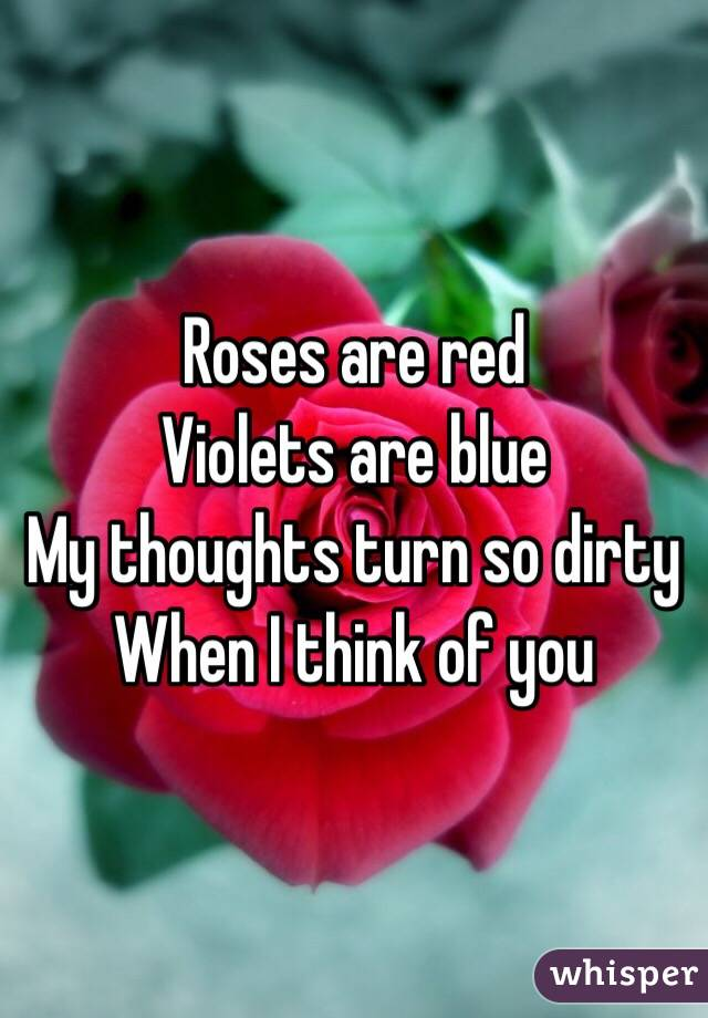 Roses are red Violets are blue My thoughts turn so dirty When I think of you