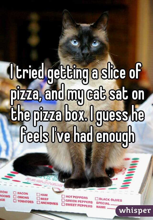 I tried getting a slice of pizza, and my cat sat on the pizza box. I guess he feels I've had enough