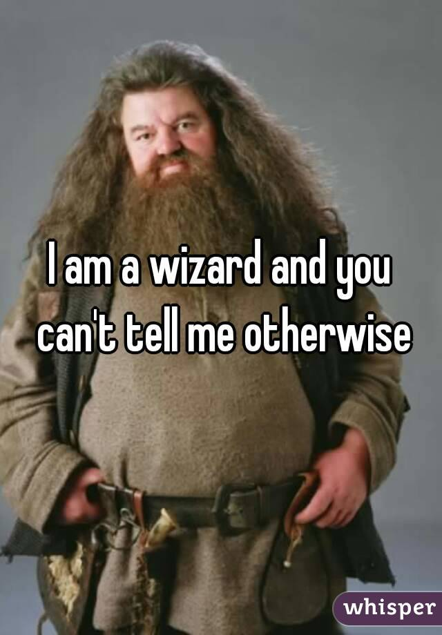 I am a wizard and you can't tell me otherwise