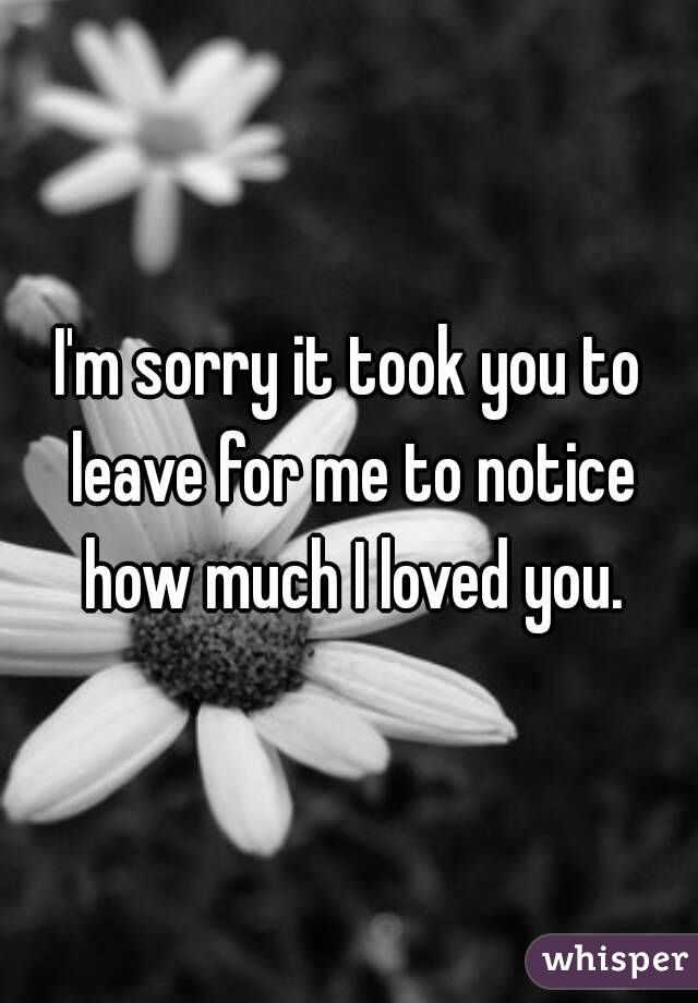 I'm sorry it took you to leave for me to notice how much I loved you.