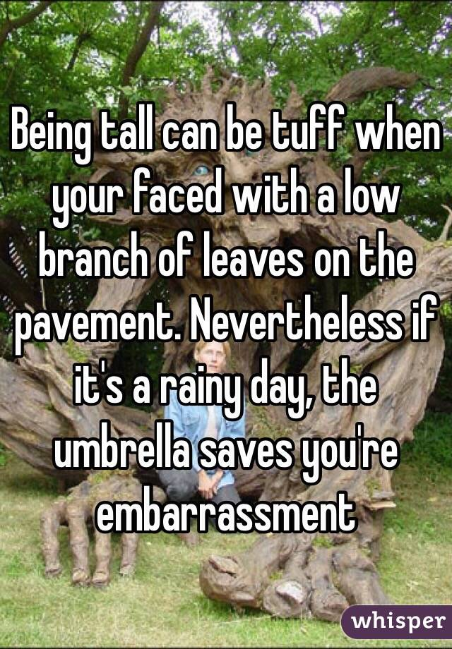 Being tall can be tuff when your faced with a low branch of leaves on the pavement. Nevertheless if it's a rainy day, the umbrella saves you're embarrassment