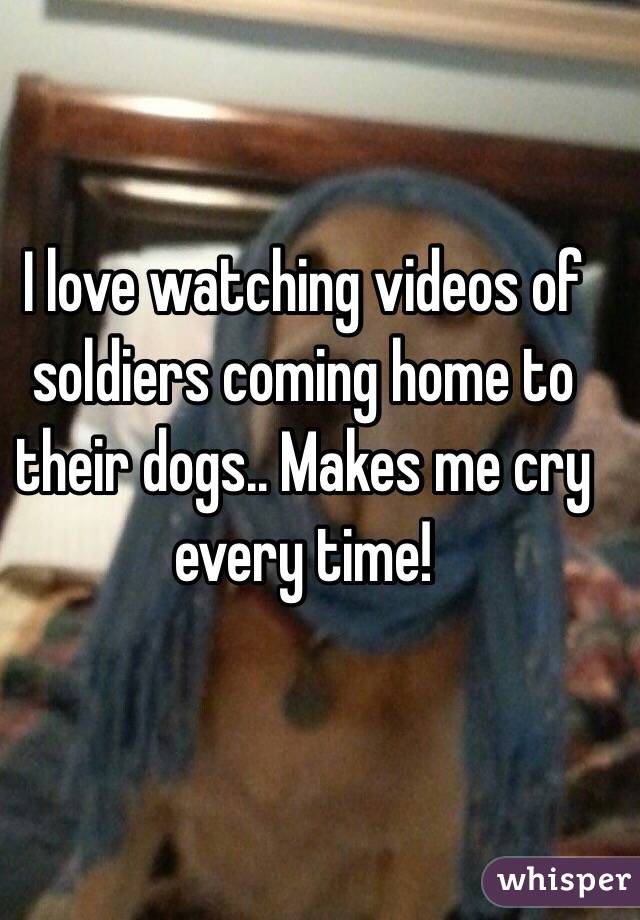 I love watching videos of soldiers coming home to their dogs.. Makes me cry every time!