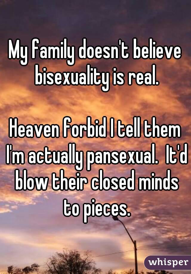 My family doesn't believe bisexuality is real.  Heaven forbid I tell them I'm actually pansexual.  It'd blow their closed minds to pieces.