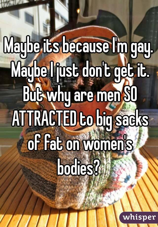 Maybe its because I'm gay. Maybe I just don't get it. But why are men SO ATTRACTED to big sacks of fat on women's bodies?