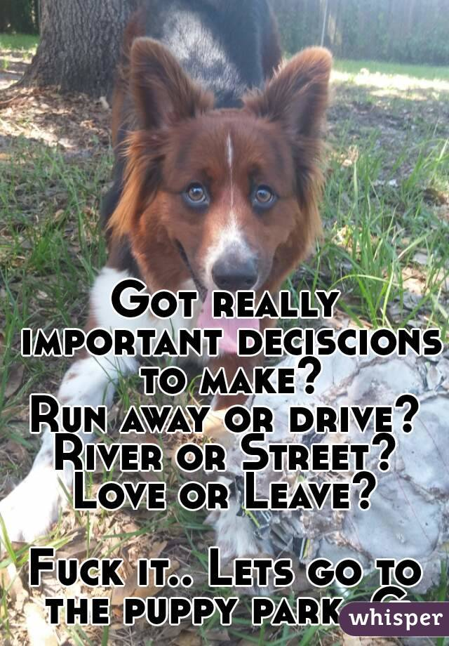Got really important deciscions to make? Run away or drive? River or Street? Love or Leave?  Fuck it.. Lets go to the puppy park, G.