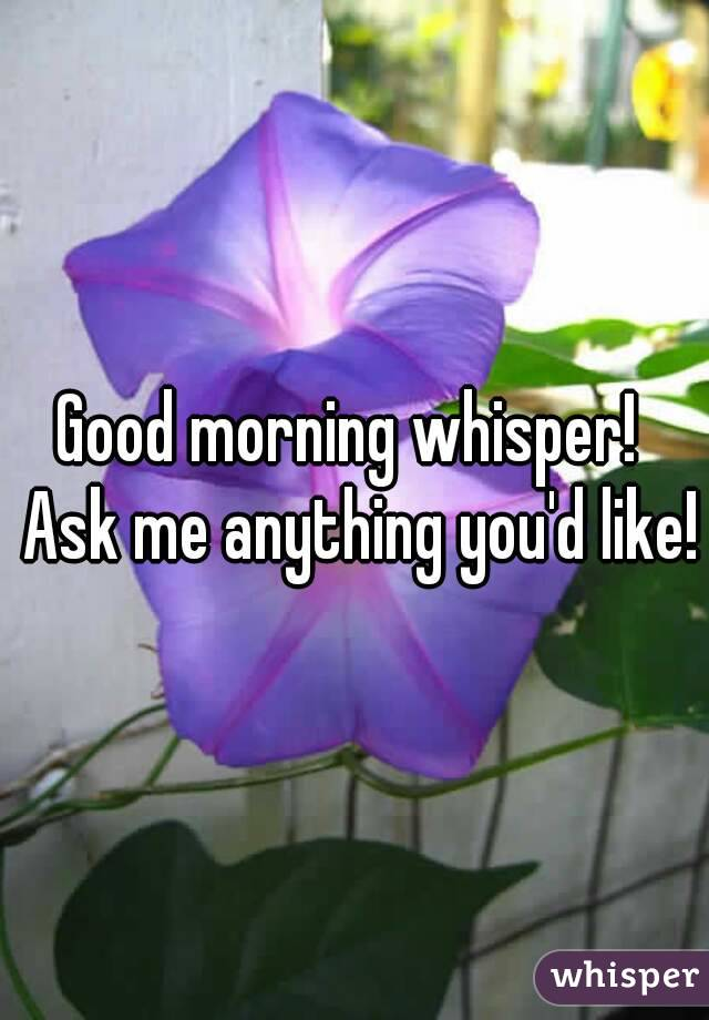 Good morning whisper!  Ask me anything you'd like!